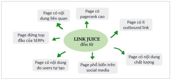nguồn của link juice